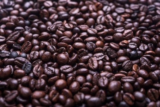 agriculture arabica aroma aromatic bean beverage