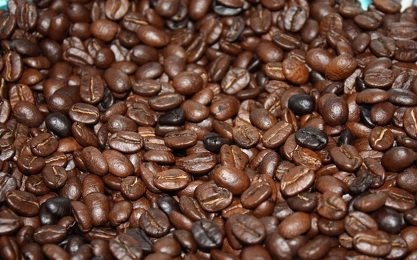 agriculture arabica aroma aromatic bean cafe