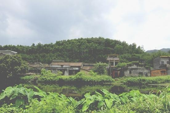 agriculture architecture beautiful buddhism culture