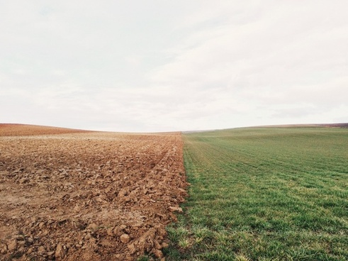 agriculture autumn country countryside crop dirt