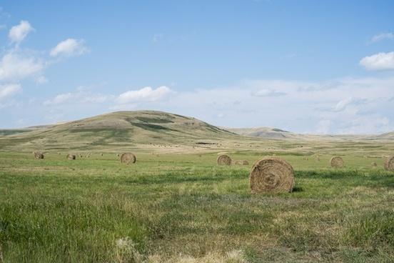 agriculture bale countryside farm feeding field