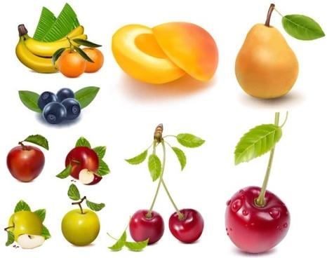 ai drawing lifelike fruits vector
