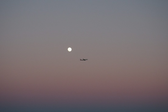 air aircraft airplane bird dusk evening flight