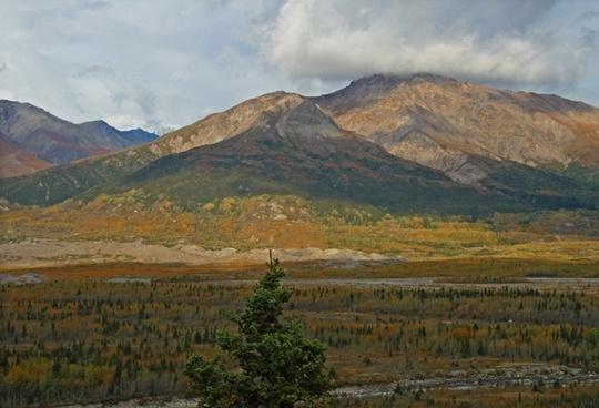 alaska tundra wilderness