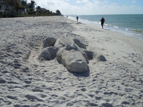 alligator beach sand sculpture