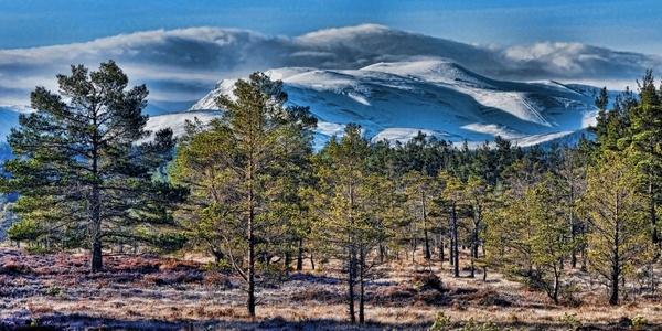 alpine mountains winter