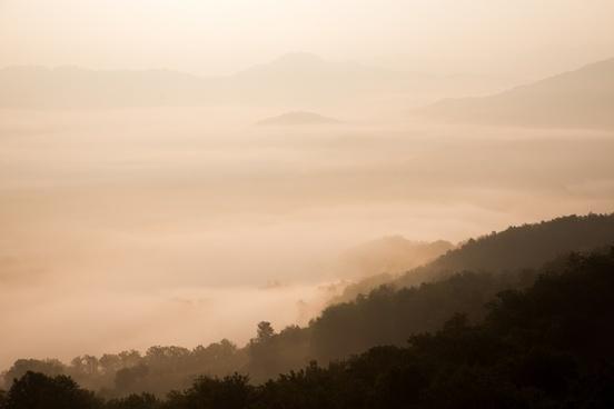 altitude fog forest haze jungle landscape mist