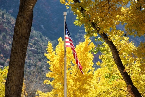 american flag against yellow trees