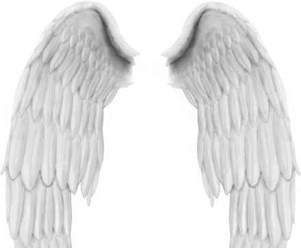 Angel Wings PSD file