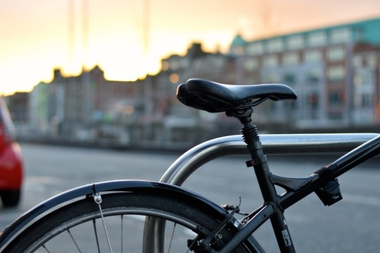 animal architecture art bicycle bike bird bridge