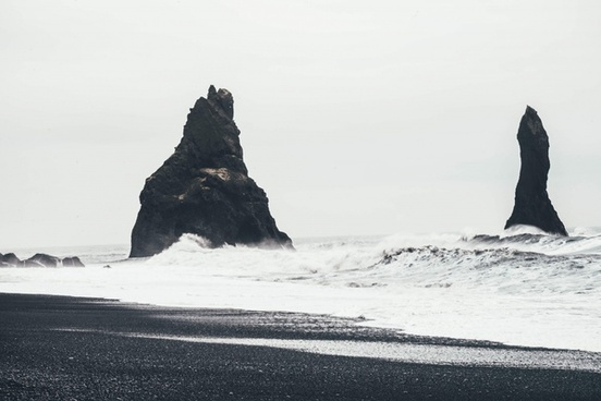 animal backlit beach bird coast cold daytime island