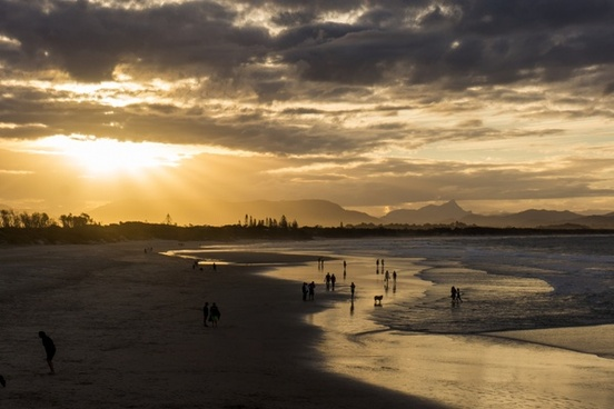 animal beach bloom cloud dog holiday horizon