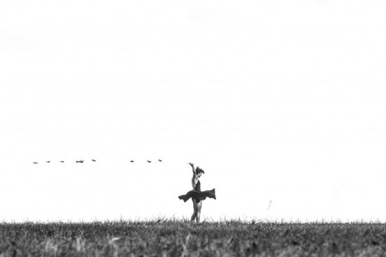 animal bird black and white cowboy crow dog field