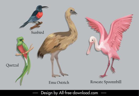 animal book design elements birds species sketch