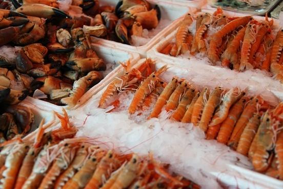 animal crab delicious