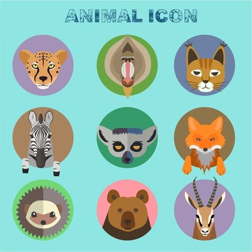 animal icons isolated with various types
