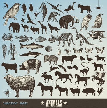 animal banner colored silhouette stylized icons decor