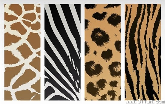leather pattern templates giraffe tiger zebra leopard sketch