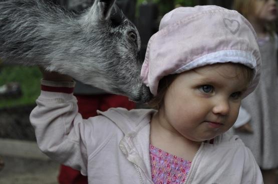 animals children love