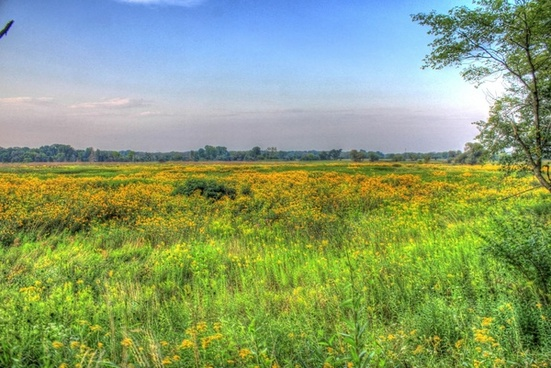 another prairie landscape at chain o lakes state park illinois