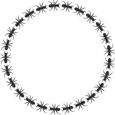ant border circle