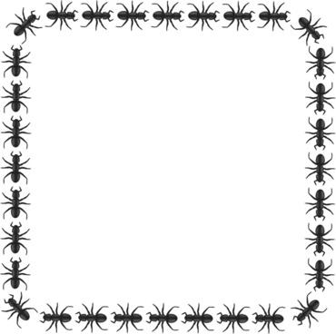ant border square