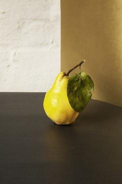 apple autumn color contrast drop fall food fruit