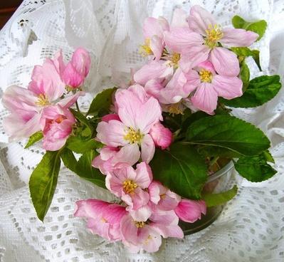 apple blossom flower arrangment