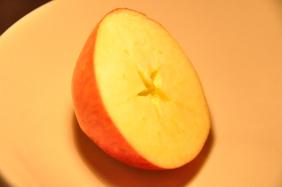 apple january 2013