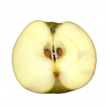 apple scanners fruit