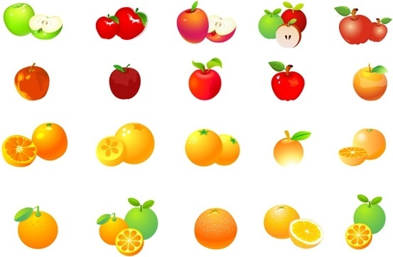 apples oranges vector