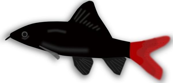 Aquarium Fish Silhouette clip art