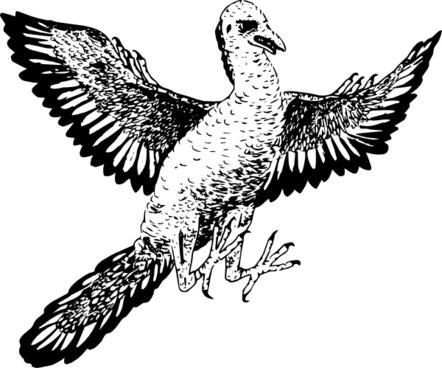 Archaeopteryx clip art