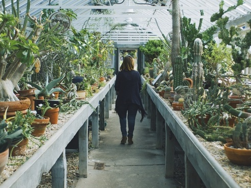 architecture bridge building garden greenhouse leaf