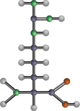 Arginine (amino acid)