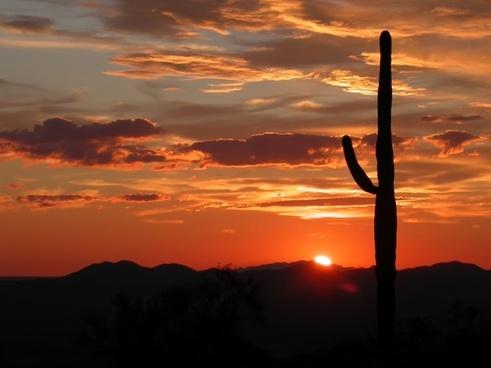 arizona landscape scenic