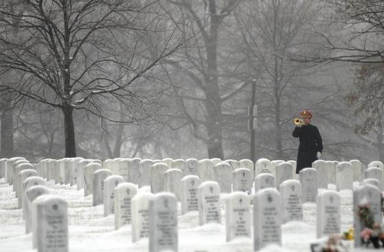arlington national cemetery washington dc bugler