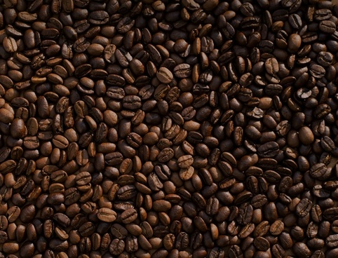 aroma aromatic bean cafe caffeine coffee crop dark