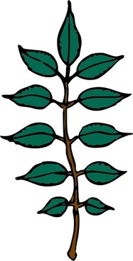 Ash Leaves clip art