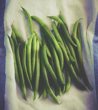 asparagus background color colour cooking cutout