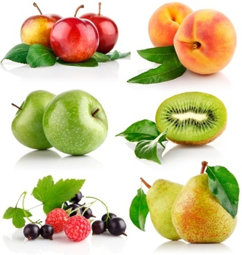 attractive fruit 02 hq pictures