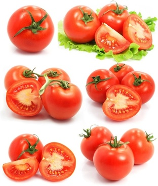 attractive tomato 01 hd picture