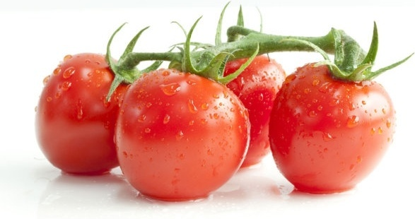 attractive tomato 04 hd picture