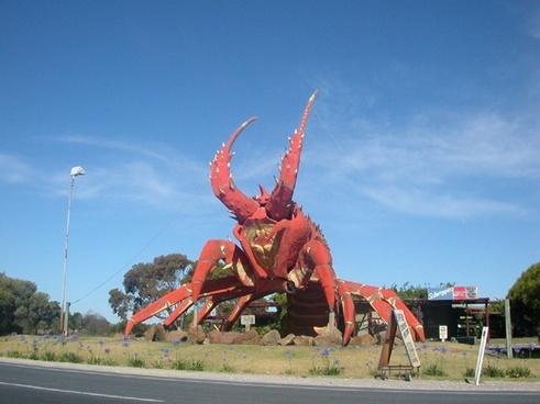 australia giant lobster