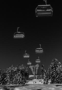 auto black and white car city dark frozen ice