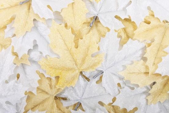 autumn background beautiful