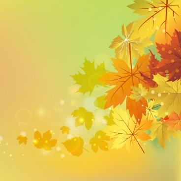 autumn background yellow leaves decoration sparkling bokeh style