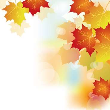 autumn beautiful leaves theme background vector