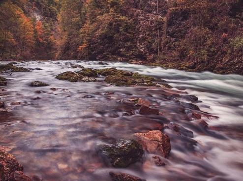 autumn blur daytime fall flow forest landscape