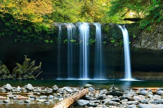 autumn cascade creek fall flow foliage forest
